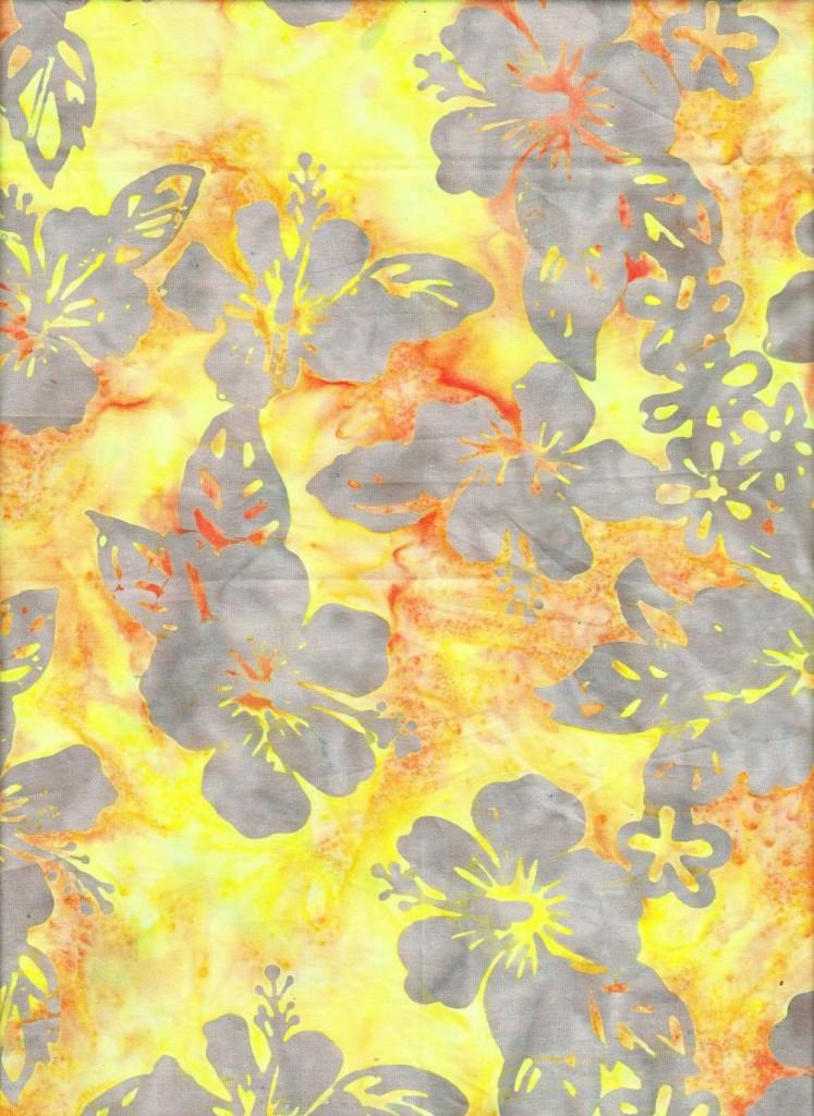Hibiscus |hib005